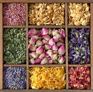 dried-herbs-and-flowers.jpg